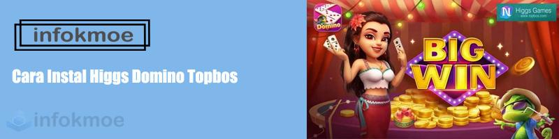 Cara Instal Higgs Domino Topbos